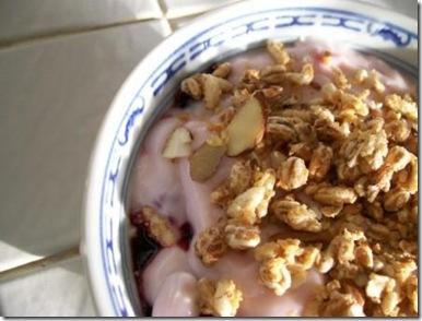 01-23-09 oatmeal